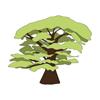 Le Kapokier Logo